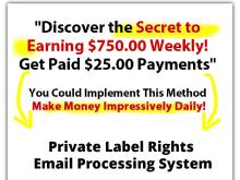 Private Label Rights Email Processing System